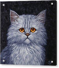 Sad Kitty Acrylic Print by Crista Forest