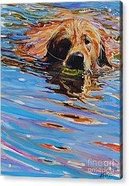 Sadie Has A Ball Acrylic Print by Molly Poole