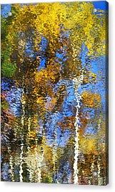 Safari Mosaic Abstract Art Acrylic Print by Christina Rollo