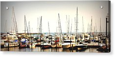 Safe Resting Place Acrylic Print by Reid Callaway