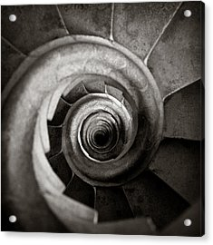 Sagrada Familia Steps Acrylic Print by Dave Bowman