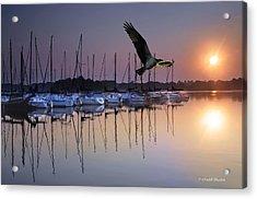 Sailboats Osprey Sunrise Acrylic Print by Randall Branham