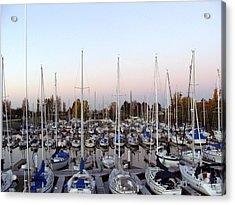 Sailing Club Marina Acrylic Print by Dee  Savage