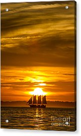 Sailing Yacht Schooner Pride Sunset Acrylic Print by Dustin K Ryan