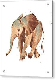 Sally Softly Elephant Acrylic Print by Alison Fennell