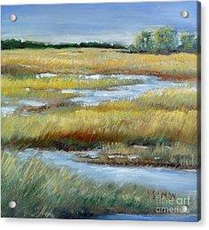 Salt Marsh Acrylic Print by Sally Simon
