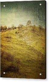 Salt Meadow Mounds Acrylic Print by Mandy Tabatt