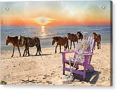 Sam Watches Over The Harem  Acrylic Print by Betsy C Knapp