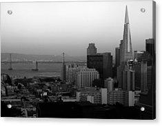 San Francisco Acrylic Print by Aidan Moran