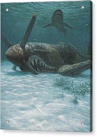 Sand Shark Acrylic Print by Randall Scott