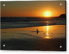 Sandpiper At Natural Bridges Santa Cruz Acrylic Print by Garnett  Jaeger