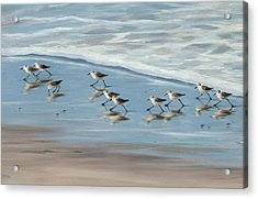 Sandpipers Acrylic Print by Tina Obrien