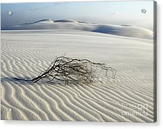 Sands Of Time Brazil Acrylic Print by Bob Christopher