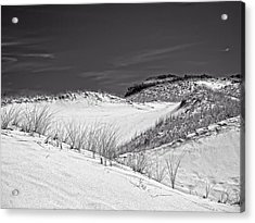 Sandy Neck Dunes 2 Acrylic Print by Frank Winters
