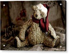 Santa Bear Acrylic Print by Carol Leigh