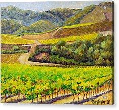 Santa Rita Color Acrylic Print by Terry Taylor