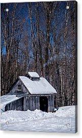 Sap House II Acrylic Print by Alana Ranney