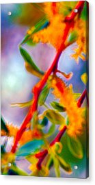 Saturated  Acrylic Print by Brent Dolliver