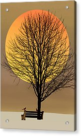 Saturday In The Park Acrylic Print by Tom York Images