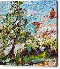 Scarlett Ibis Wildlife Tropical Summer Acrylic Print by Ginette Callaway