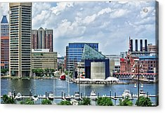 Scene From Federal Hill In June Acrylic Print by Toni Martsoukos