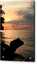 Scenic Beach Driftwood Sunset Acrylic Print by Heather Allen