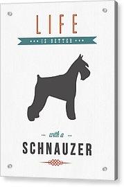 Schnauzer 01 Acrylic Print by Aged Pixel