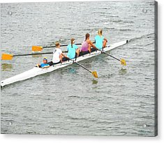 Sculling Team On Palm River  Acrylic Print by Buzz  Coe
