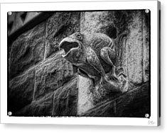 Sculpted Frog - Art Unexpected Acrylic Print by Tom Mc Nemar