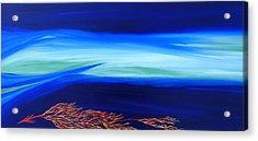 Sea Dragon Acrylic Print by Robert Nickologianis