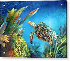 Sea Escape Iv - Hawksbill Turtle Flying Free Acrylic Print by Nancy Tilles