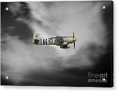 Sea Fury  Acrylic Print by J Biggadike