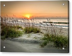 Sea Oat Islands Acrylic Print by Steve DuPree
