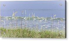 Sea Oats Panorama 1 Acrylic Print by Karen Stephenson