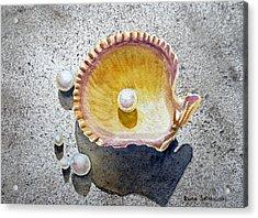 Sea Shell And Pearls Acrylic Print by Irina Sztukowski