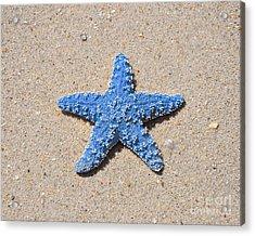 Sea Star - Light Blue Acrylic Print by Al Powell Photography USA