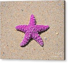 Sea Star - Pink Acrylic Print by Al Powell Photography USA