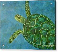 Sea Turtle Acrylic Print by Julie Neuman