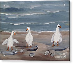 Seagulls At The Beach Acrylic Print by Beverly Livingstone