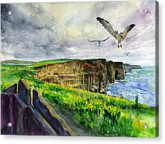 Seagulls At The Cliffs Of Moher Acrylic Print by John D Benson