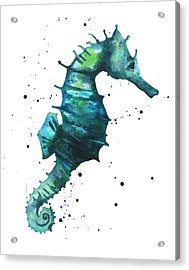 Seahorse In Teal Acrylic Print by Alison Fennell