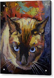 Seal Point Siamese Acrylic Print by Michael Creese