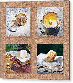 Seashell Collection I Acrylic Print by Irina Sztukowski