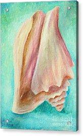 Seashell On Teal Acrylic Print by Gabriela Valencia