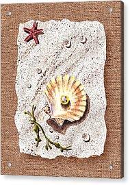 Seashell With The Pearl Sea Star And Seaweed  Acrylic Print by Irina Sztukowski