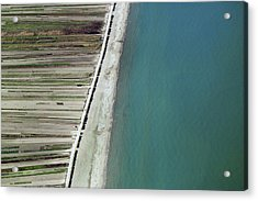 Seaside, Barletta Acrylic Print by Blom ASA