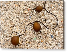 Seaweed And Sand - Jewels Of The Ocean Acrylic Print by Artist and Photographer Laura Wrede