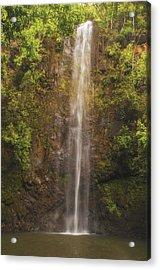 Secret Falls Acrylic Print by Brian Harig