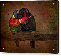 Secrets Acrylic Print by Susan Candelario