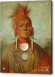 See Non Ty A An Iowa Medicine Man Acrylic Print by George Catlin